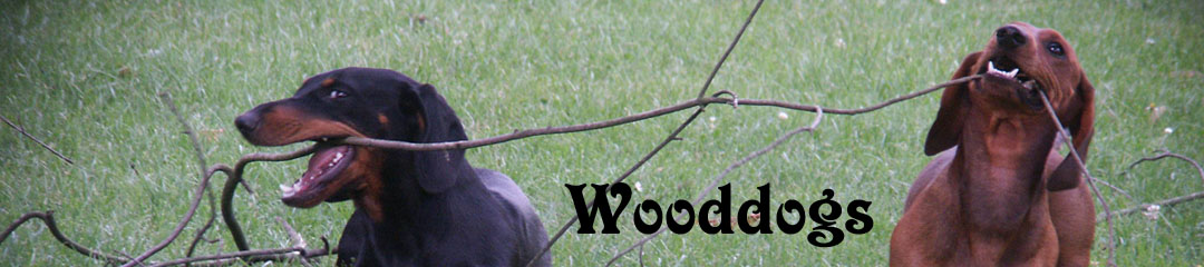 Wooddogs-Logo
